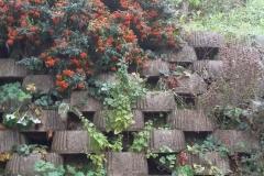 giardino-terrazzato